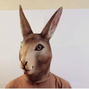 Маска зайца благородного