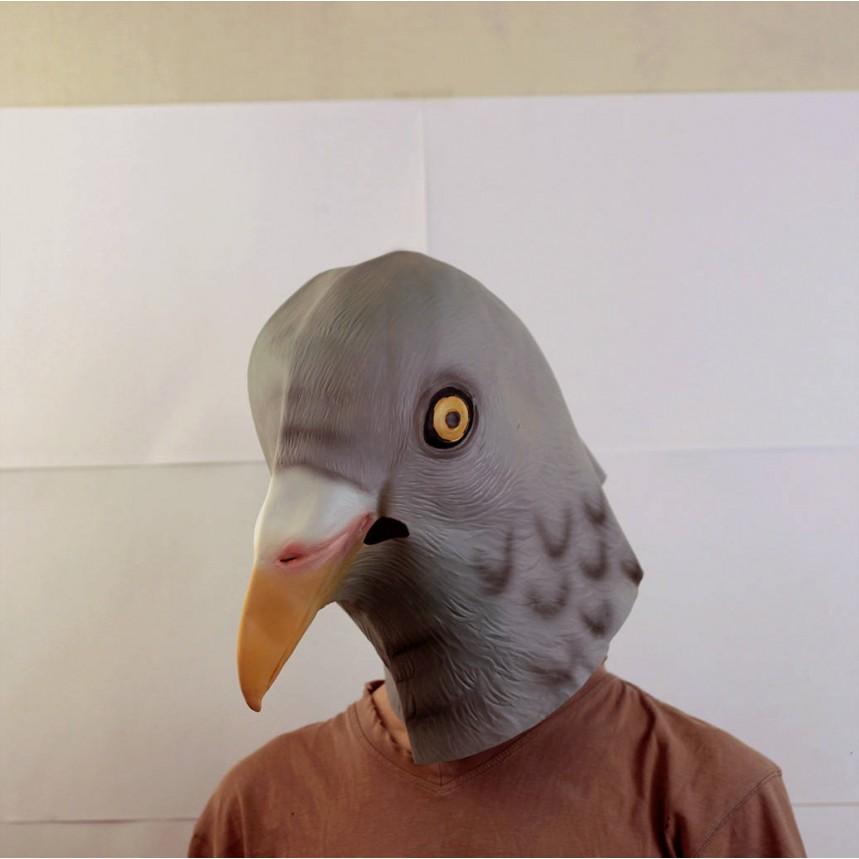 Маску голубя на картинках